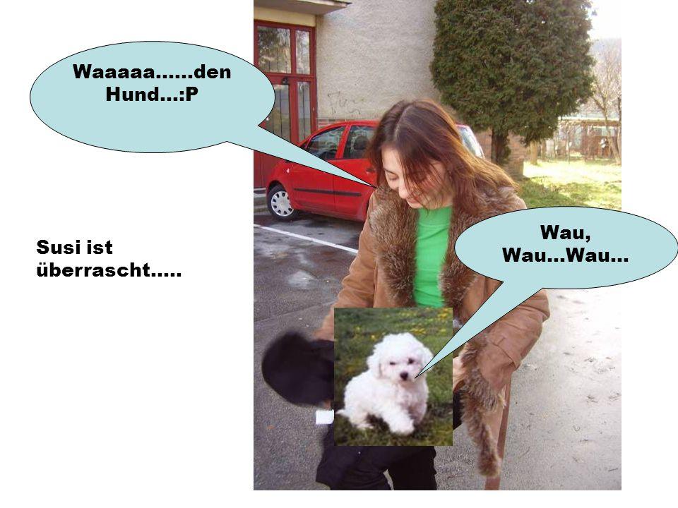 Waaaaa......den Hund...:P Wau, Wau...Wau... Susi ist überrascht.....