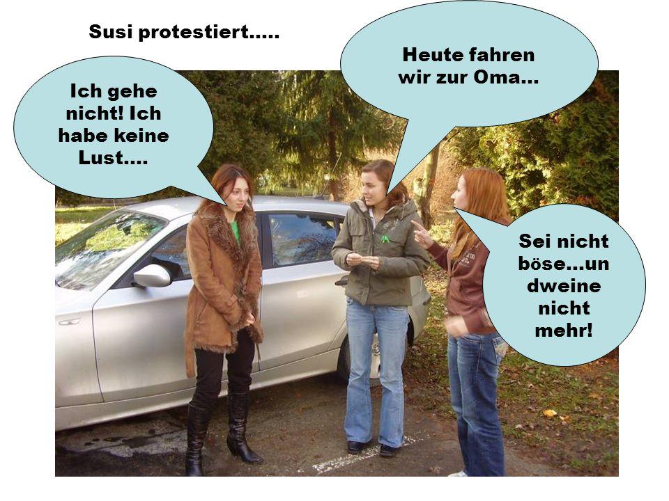 Heute fahren wir zur Oma... Susi protestiert.....