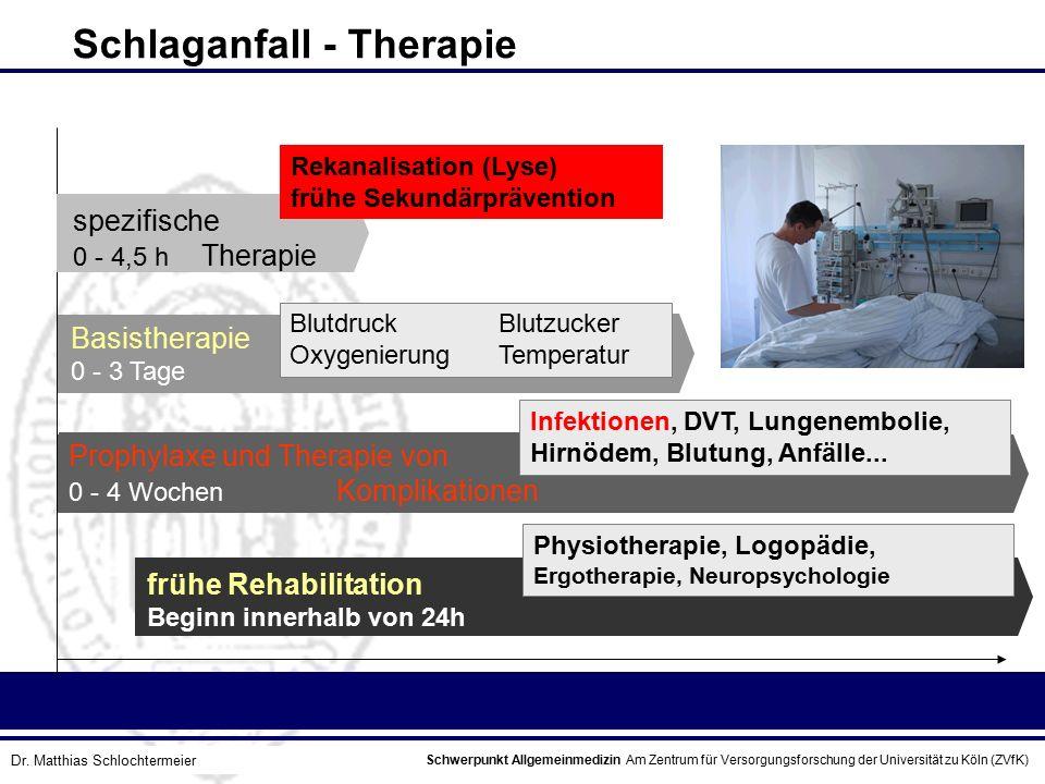 Schlaganfall - Therapie