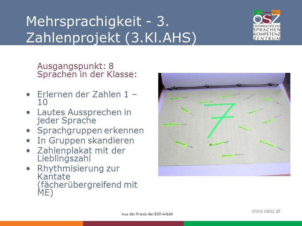 Mehrsprachigkeit - 3. Zahlenprojekt (3.Kl.AHS)