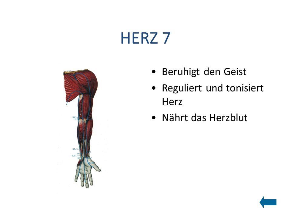HERZ 7 Beruhigt den Geist Reguliert und tonisiert Herz