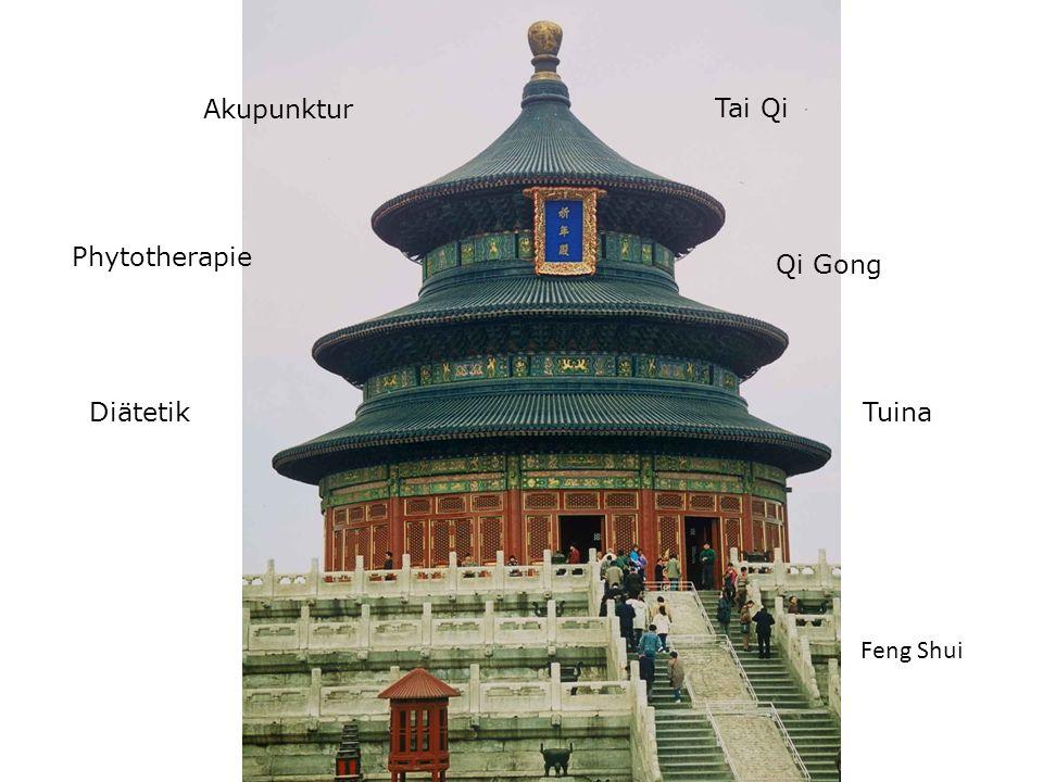 Akupunktur Tai Qi Phytotherapie Qi Gong Diätetik Tuina Feng Shui