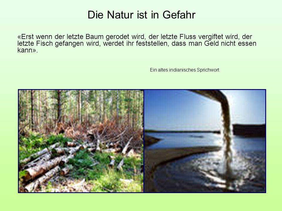 Die Natur ist in Gefahr