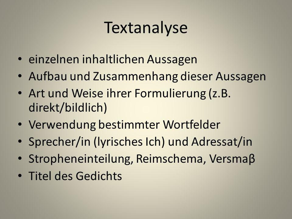Textanalyse einzelnen inhaltlichen Aussagen