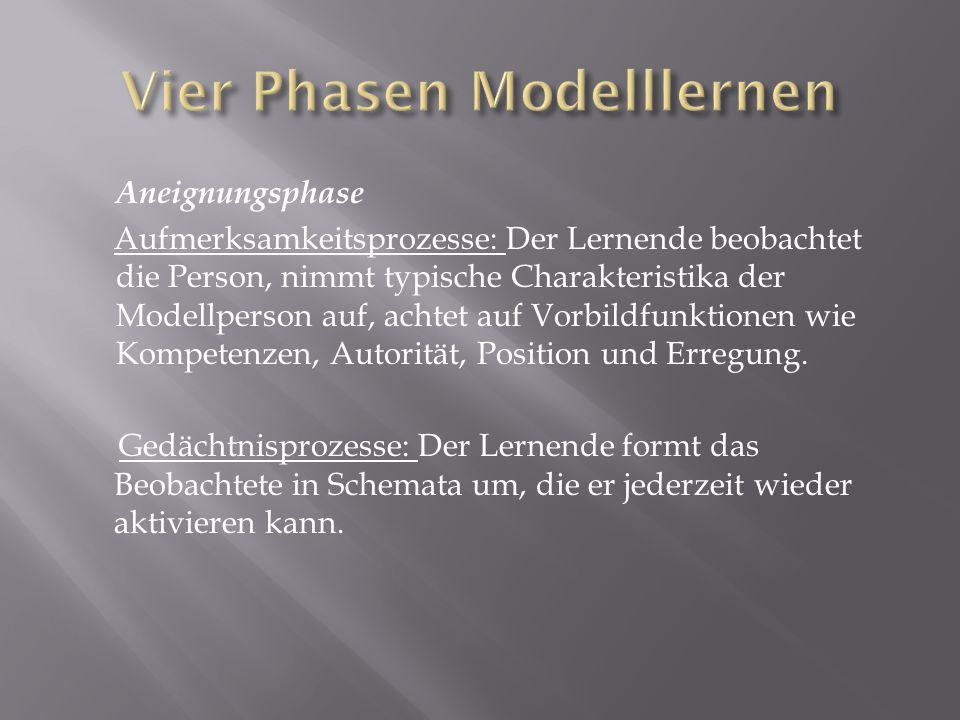Vier Phasen Modelllernen