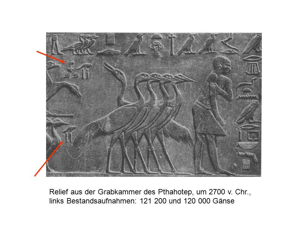 Relief aus der Grabkammer des Pthahotep, um 2700 v. Chr
