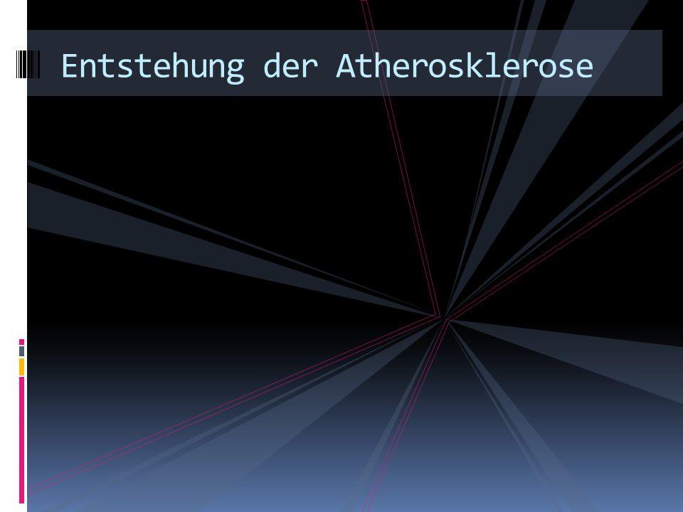 Entstehung der Atherosklerose