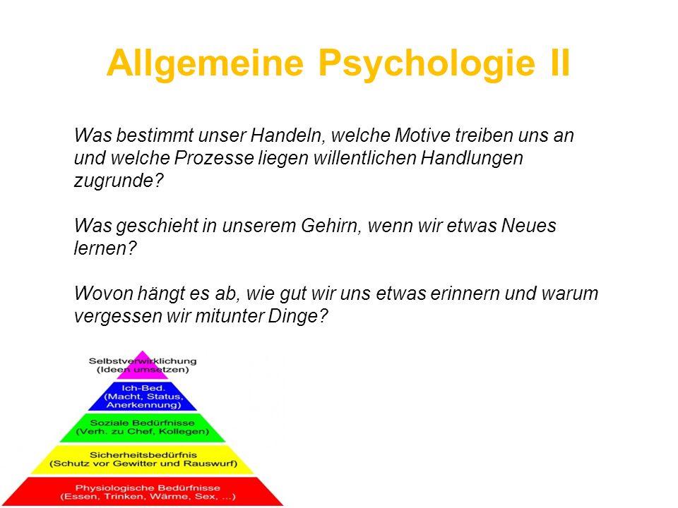 Allgemeine Psychologie II