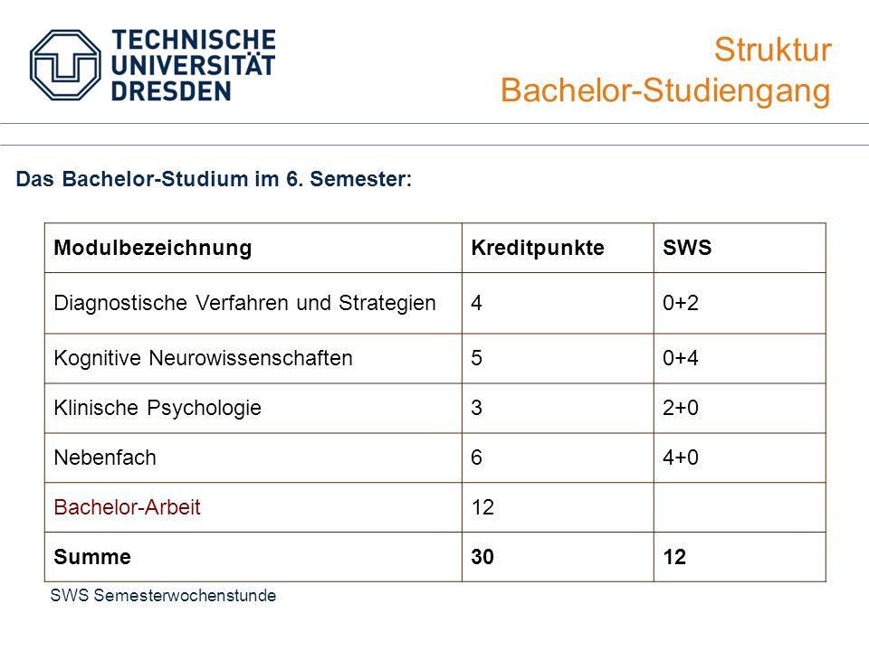 Struktur Bachelor-Studiengang