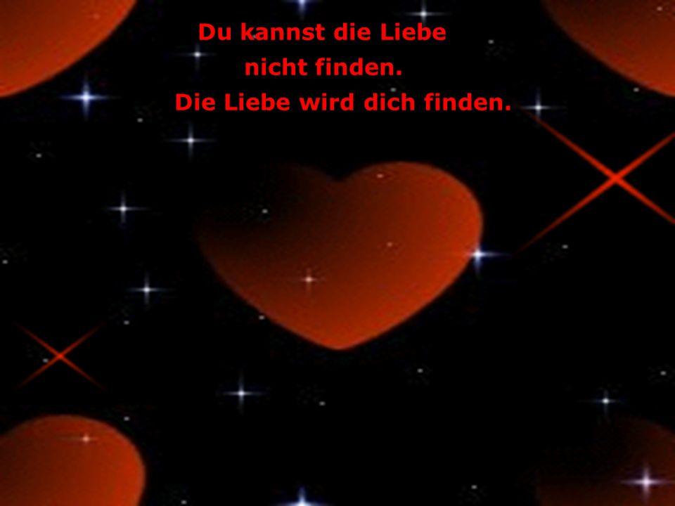 Die Liebe wird dich finden.