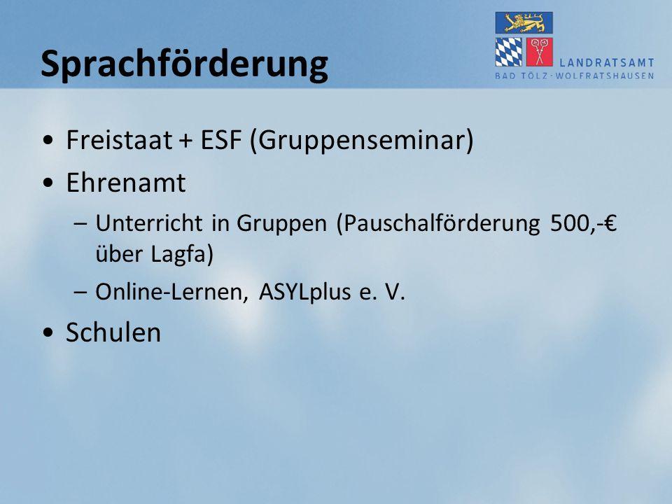 Sprachförderung Freistaat + ESF (Gruppenseminar) Ehrenamt Schulen