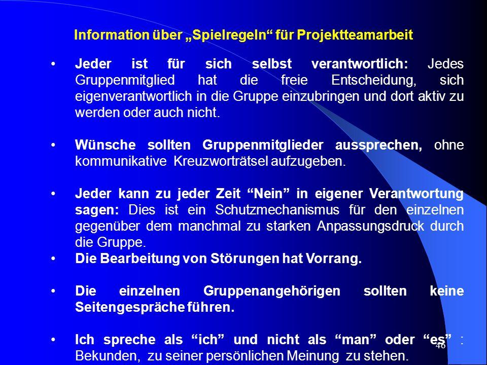 """Information über """"Spielregeln für Projektteamarbeit"""