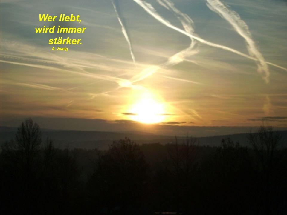 Wer liebt, wird immer stärker. A. Zweig