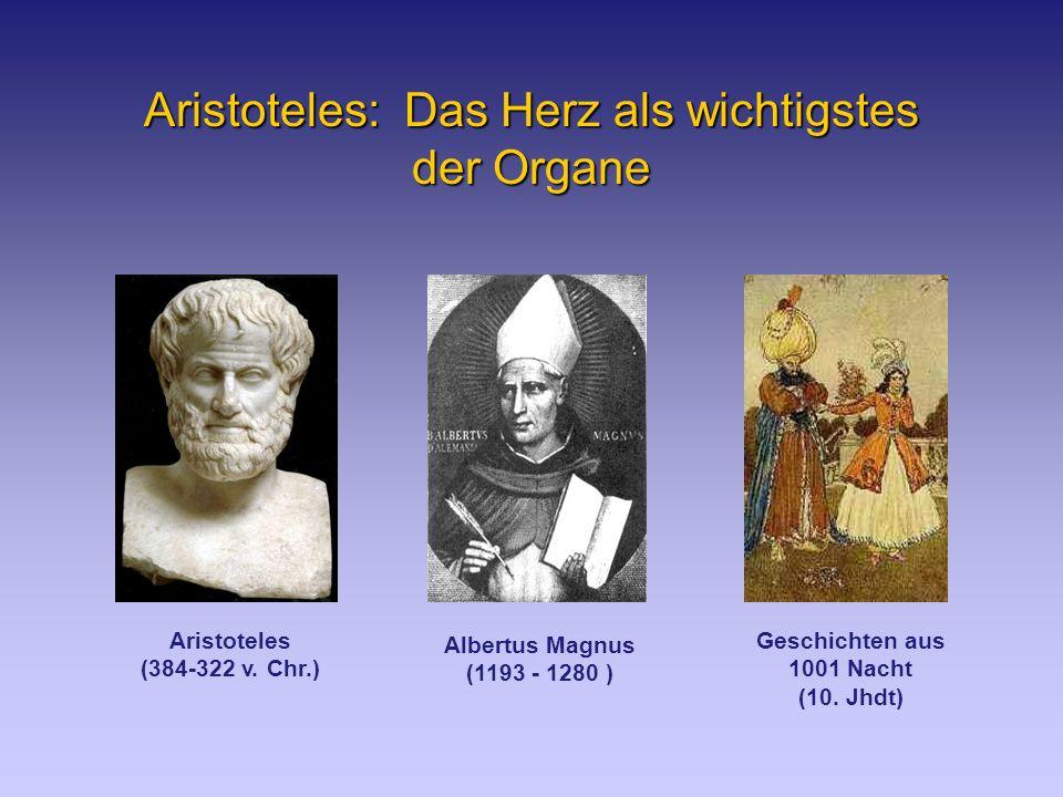Aristoteles: Das Herz als wichtigstes der Organe