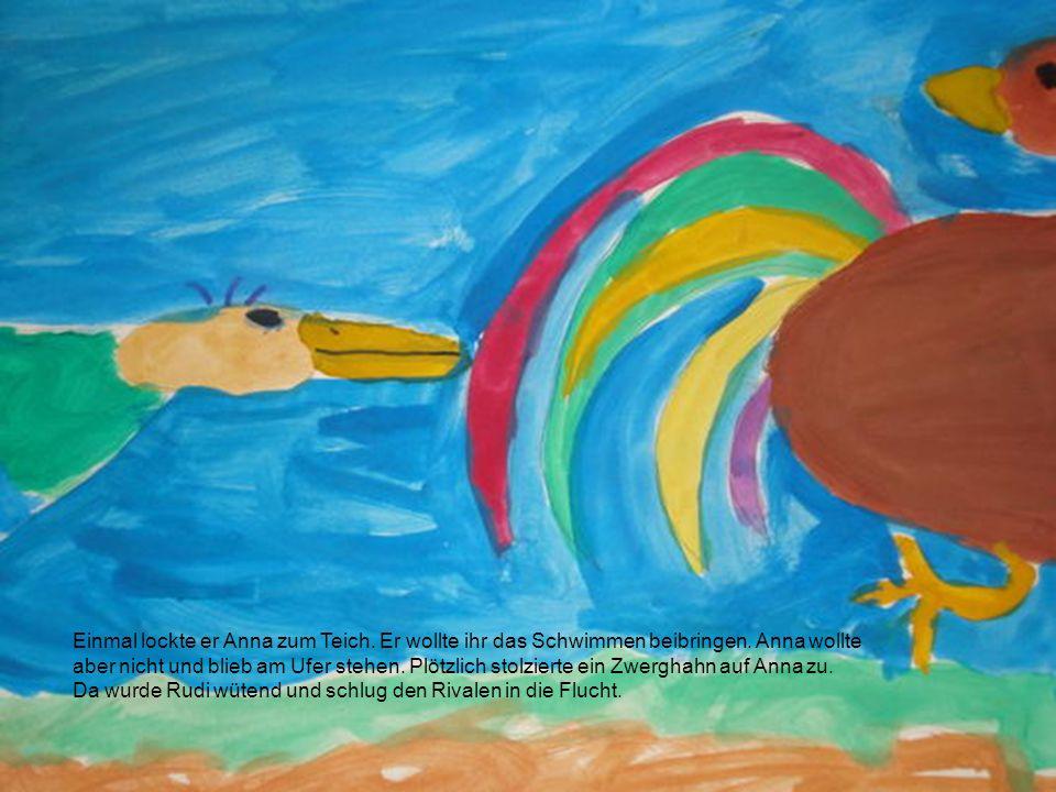 Einmal lockte er Anna zum Teich. Er wollte ihr das Schwimmen beibringen. Anna wollte aber nicht und blieb am Ufer stehen. Plötzlich stolzierte ein Zwerghahn auf Anna zu.