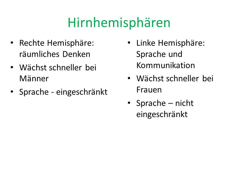 Hirnhemisphären Rechte Hemisphäre: räumliches Denken