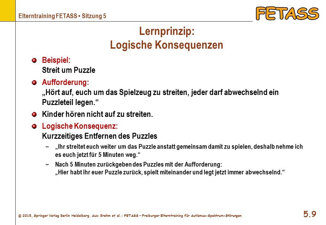 Lernprinzip: Logische Konsequenzen