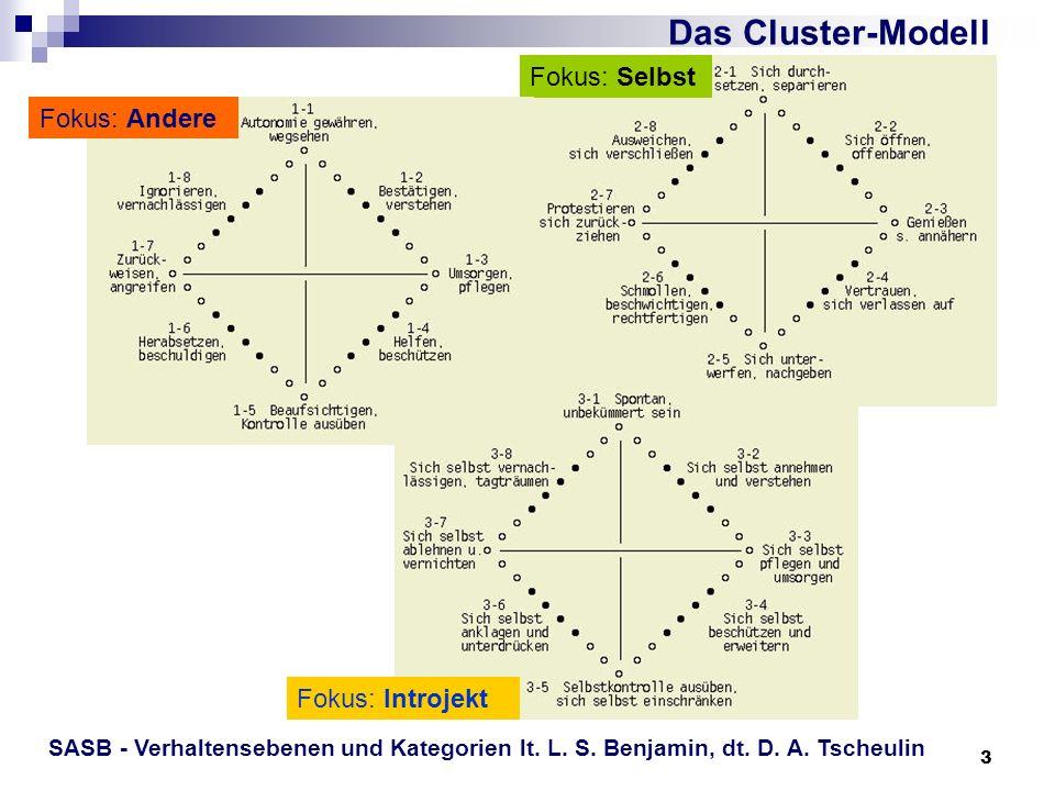 Das Cluster-Modell Fokus: Selbst Fokus: Andere Fokus: Introjekt