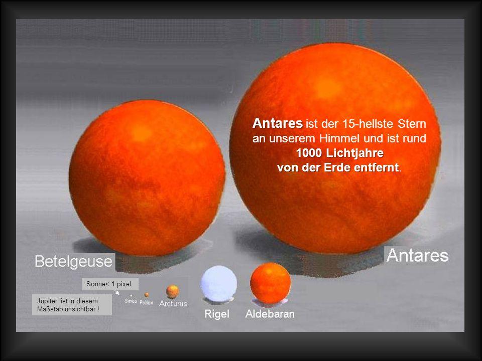 Antares ist der 15-hellste Stern an unserem Himmel und ist rund