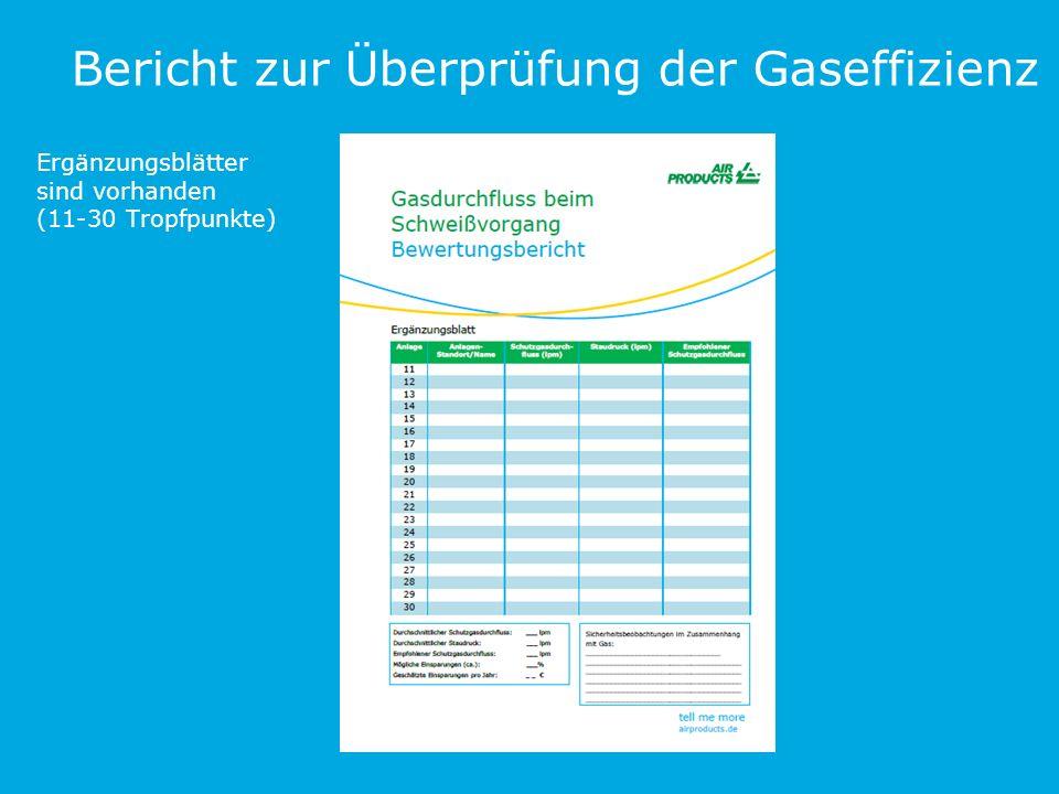 Bericht zur Überprüfung der Gaseffizienz