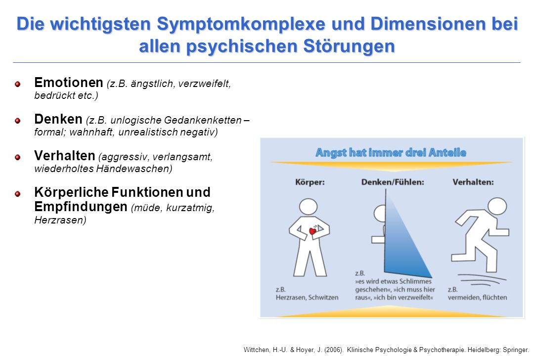 Die wichtigsten Symptomkomplexe und Dimensionen bei allen psychischen Störungen