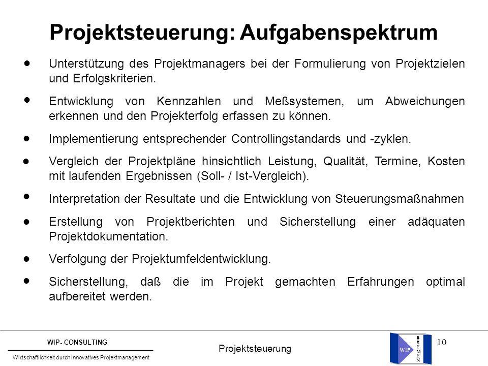 Projektsteuerung: Aufgabenspektrum