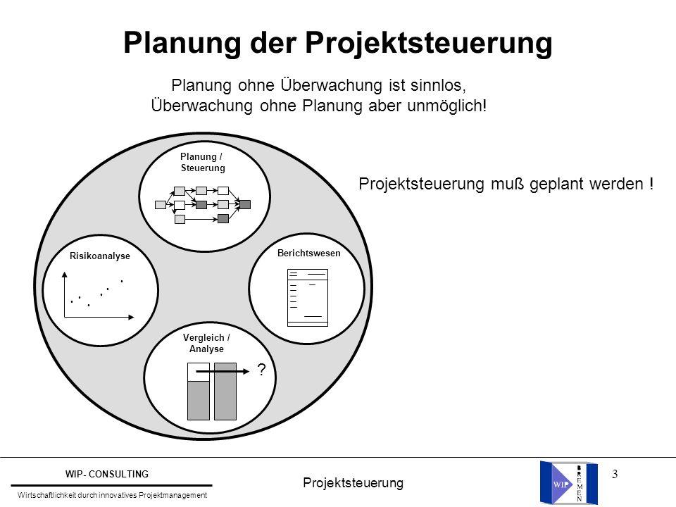 Planung der Projektsteuerung