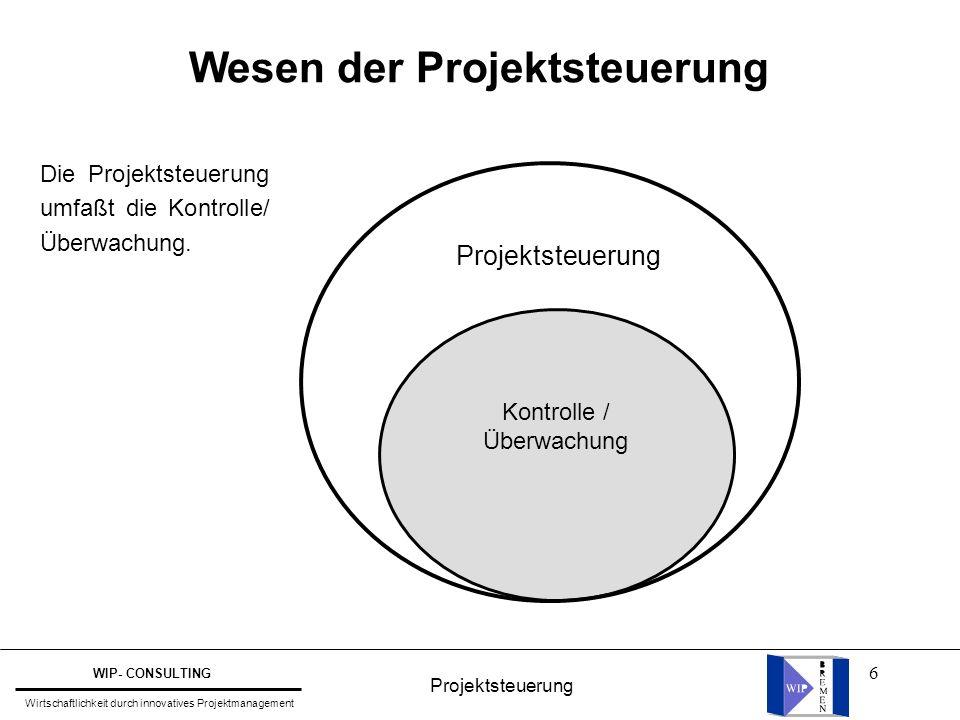 Wesen der Projektsteuerung