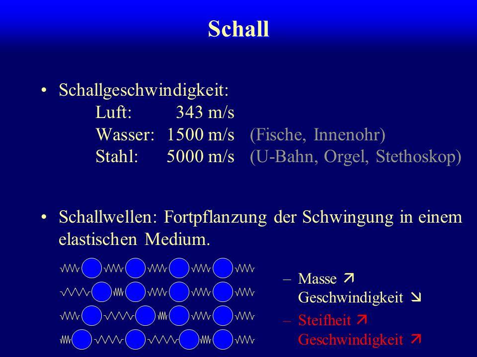Schall Schallgeschwindigkeit: Luft: 343 m/s Wasser: 1500 m/s (Fische, Innenohr) Stahl: 5000 m/s (U-Bahn, Orgel, Stethoskop)