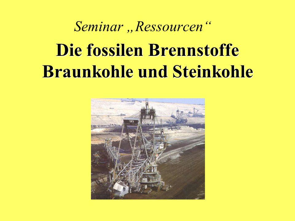 Die fossilen Brennstoffe Braunkohle und Steinkohle