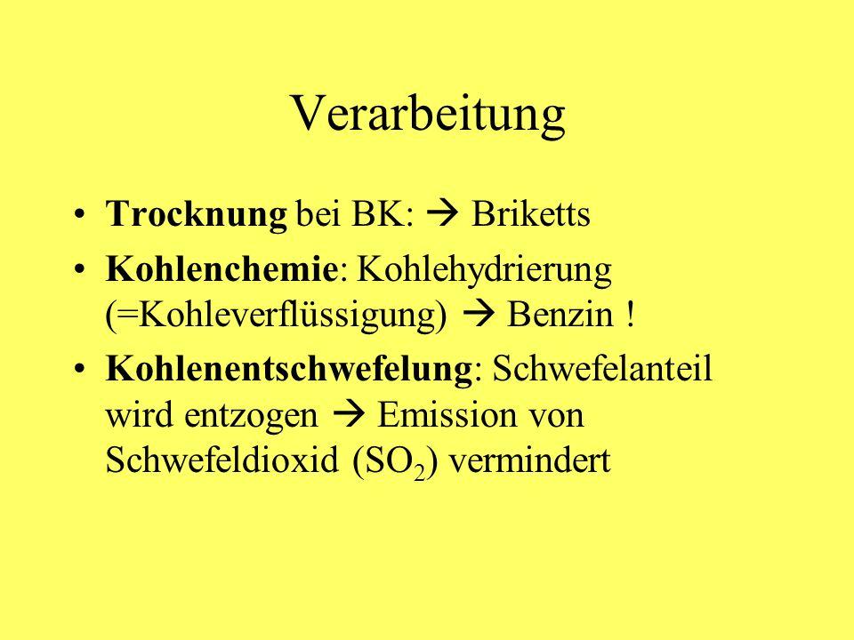 Verarbeitung Trocknung bei BK:  Briketts