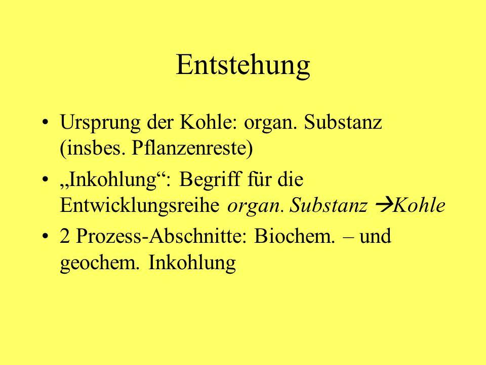 Entstehung Ursprung der Kohle: organ. Substanz (insbes. Pflanzenreste)