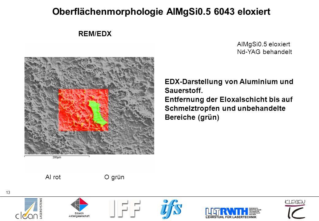 Oberflächenmorphologie AlMgSi0.5 6043 eloxiert