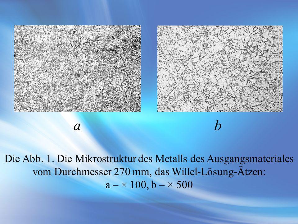 a b Die Abb. 1. Die Mikrostruktur des Metalls des Ausgangsmateriales