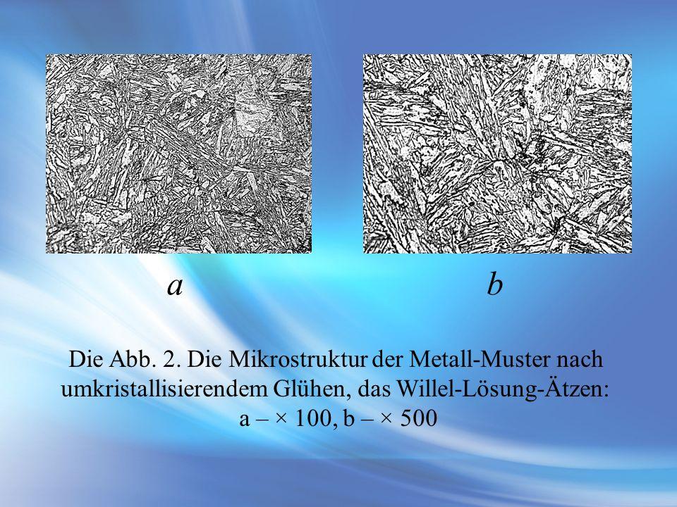 а b Die Abb. 2. Die Mikrostruktur der Metall-Muster nach