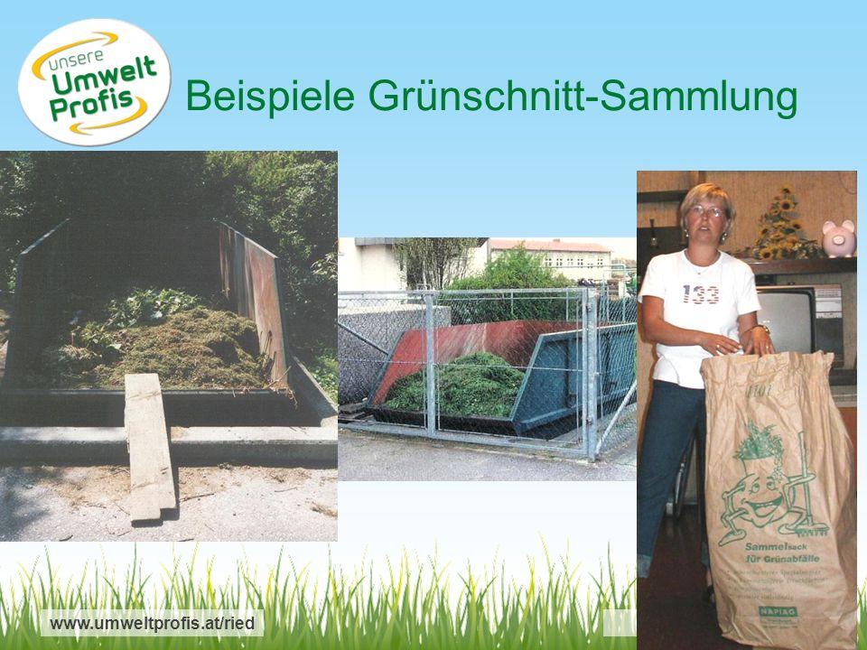 Beispiele Grünschnitt-Sammlung