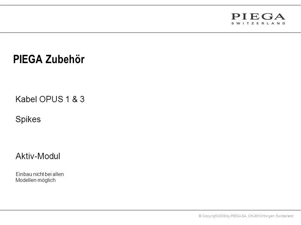 PIEGA Zubehör Kabel OPUS 1 & 3 Spikes Aktiv-Modul
