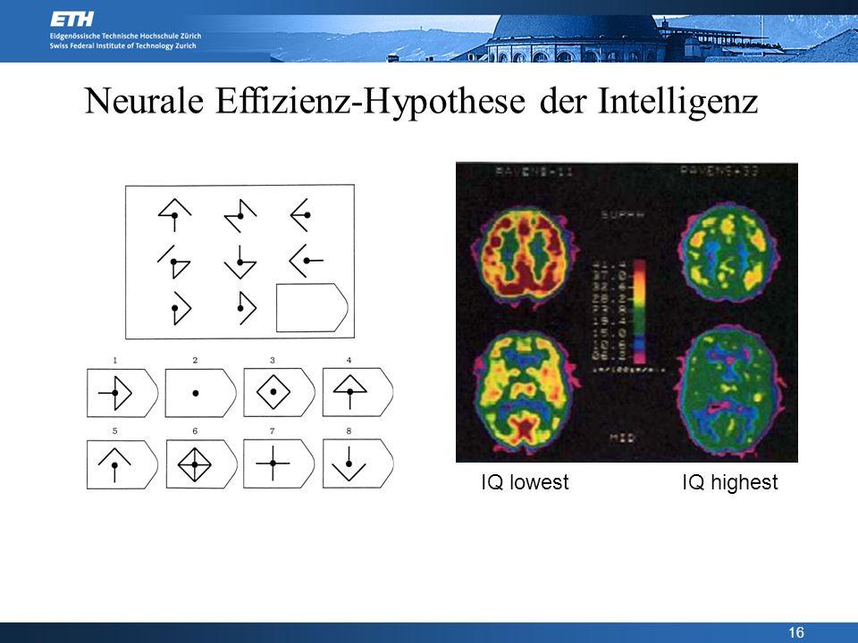 Neurale Effizienz-Hypothese der Intelligenz