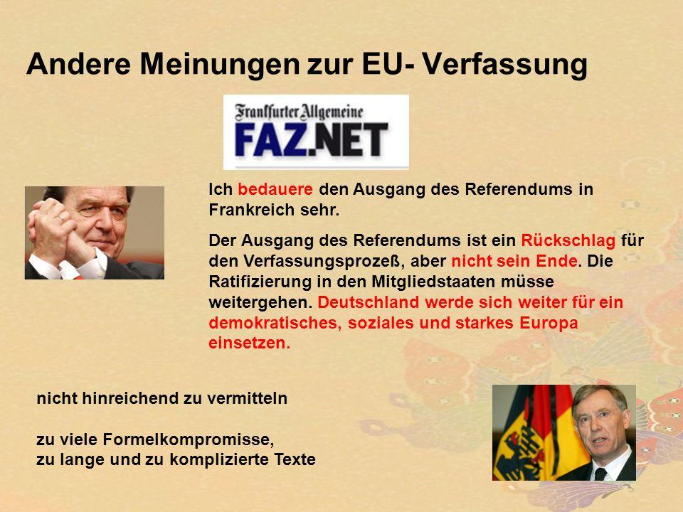Andere Meinungen zur EU- Verfassung