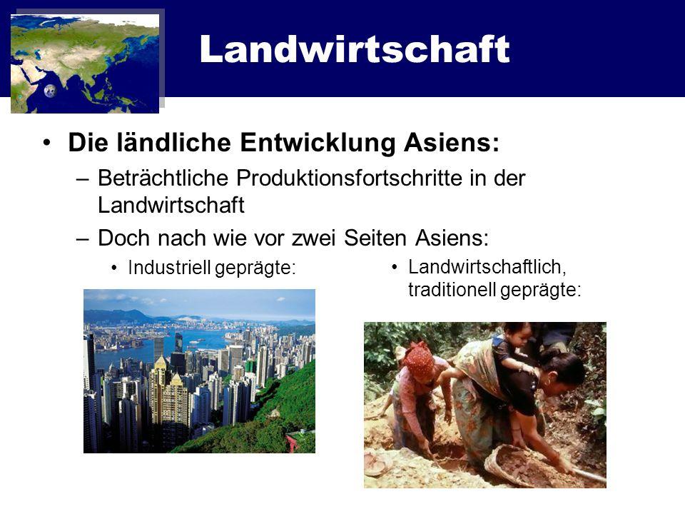 Landwirtschaft Die ländliche Entwicklung Asiens: