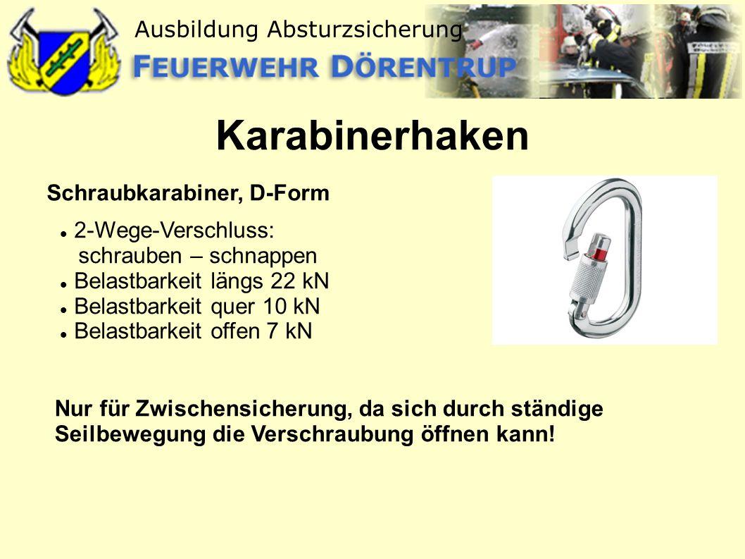 Karabinerhaken Schraubkarabiner, D-Form