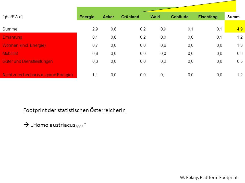 """Footprint der statistischen ÖsterreicherIn  """"Homo austriacus2005"""