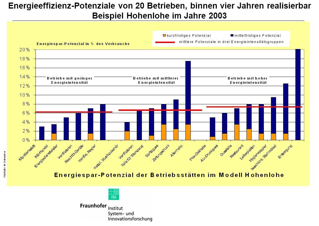 Energieeffizienz-Potenziale von 20 Betrieben, binnen vier Jahren realisierbar Beispiel Hohenlohe im Jahre 2003