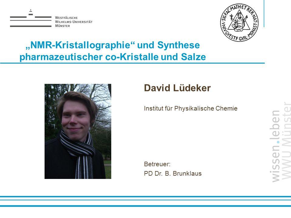 """""""NMR-Kristallographie und Synthese pharmazeutischer co-Kristalle und Salze"""
