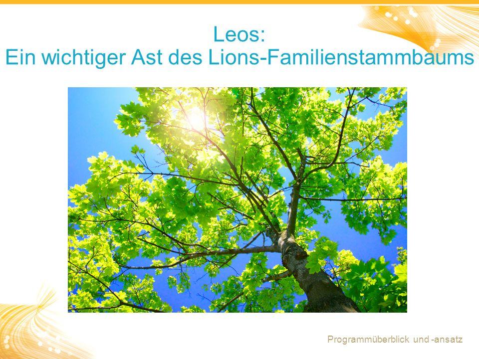 Leos: Ein wichtiger Ast des Lions-Familienstammbaums