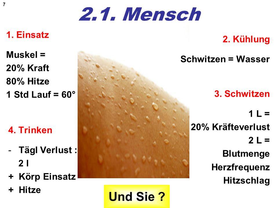 2.1. Mensch 1. Einsatz Muskel = 20% Kraft 80% Hitze 1 Std Lauf = 60° 2. Kühlung Schwitzen = Wasser