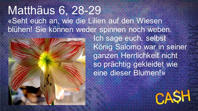 Matthäus 6, 28-29 Matthäus 6, 28-29. «Seht euch an, wie die Lilien auf den Wiesen blühen! Sie können weder spinnen noch weben.