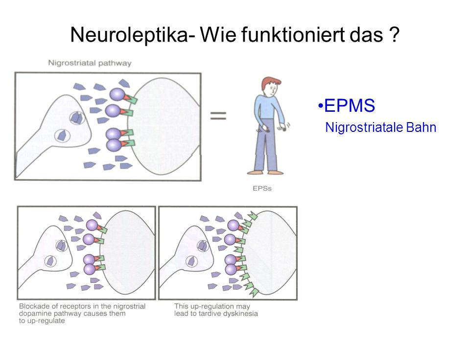 Neuroleptika- Wie funktioniert das