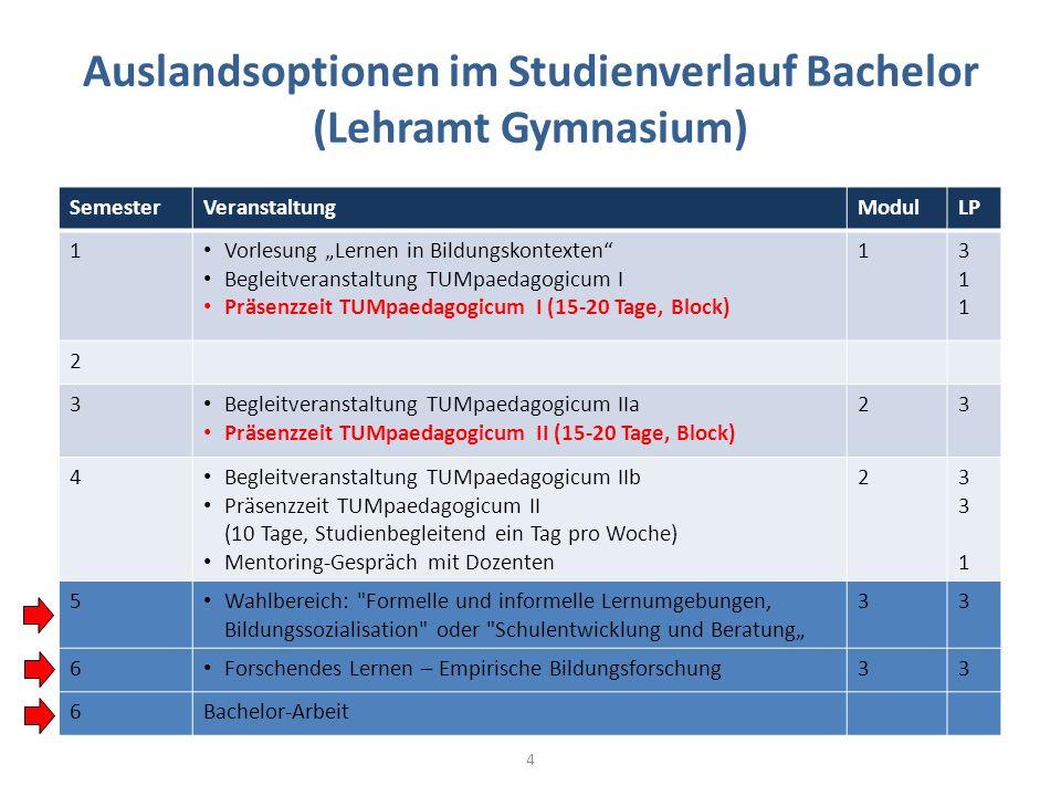 Auslandsoptionen im Studienverlauf Bachelor (Lehramt Gymnasium)