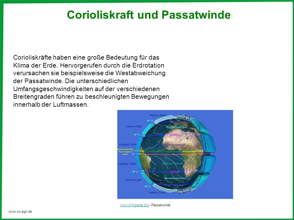 Corioliskraft und Passatwinde